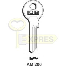 AM200